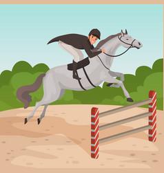 smiling man jockey on gray horse jumping over vector image