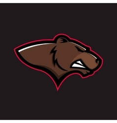 Brown bear head Grizzly head vector