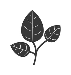 Silhouette branch with multiple leaves vector