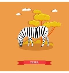 Cartoon Zebra in flat style Design vector image