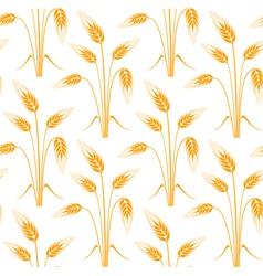 Barley vector image