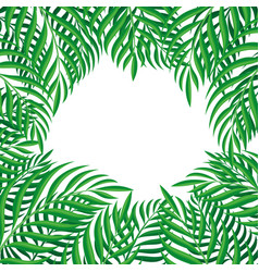 frame tropical leaves vector image
