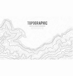 Grey contours topography geographic vector