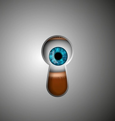 human eye in the keyhole vector image