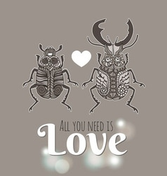 Insects Stag Beetle vector image
