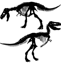 T rex skeleton vector image