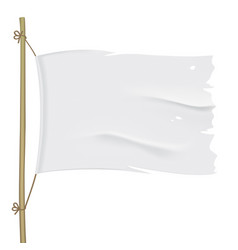 white torn flag close up template vector image