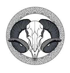 with goat skull vector image