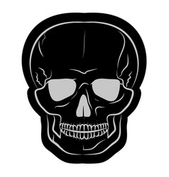 image of a black human skull vector image
