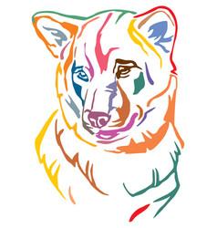 Colorful decorative portrait of dog shiba inu vector