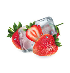 Fresh strawberries with ice cubes and water vector
