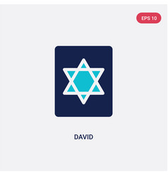 Two color david icon from cultures concept vector