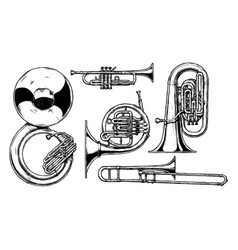 brass musical instrument vector image