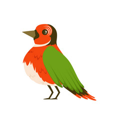 colorful bird vector image vector image
