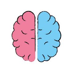 Creative brain with idea over white background vector