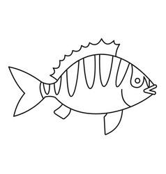 Perca fluviatilis icon outline style vector