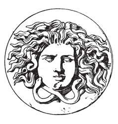 Antique patera medusa head is design comes from vector