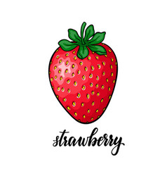 beautiful cartoon red strawberry with lettering vector image