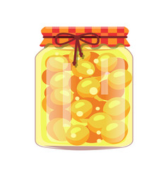 Conservated apricots in glass jar with rustic lid vector