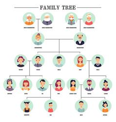 Family tree human avatars relationship scheme vector