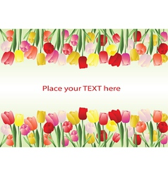tulips frame vector image