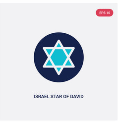 Two color israel star david icon from cultures vector