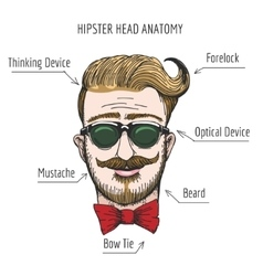 Hipster Head Anatomy vector image vector image