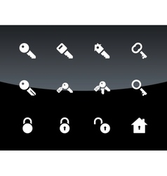 Key icons on black background vector image vector image