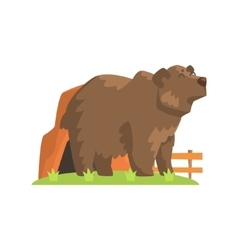 Brown Bear Coming Out Of Bear Den Standing On vector