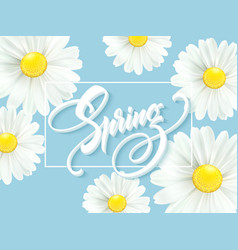calligraphic inscription hello spring with spring vector image