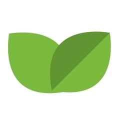 simple leaves vector image