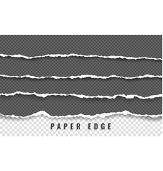 torn paper edge paper stripes ripped squared vector image
