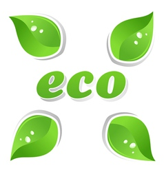 Ecology leafs vector