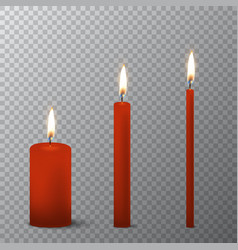 3d realistic different red paraffin or wax vector image vector image