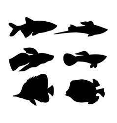 Aquarium fish dark silhouette isolated on white vector