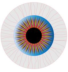 Bloodshot eye vector
