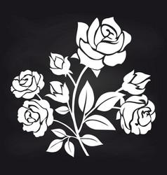 bush roses flowers on chalkboard vector image