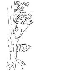 cute raccoon sitting on tree coon clipart vector image
