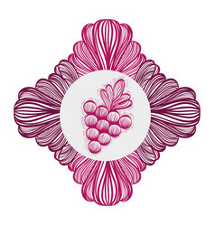 Grape fruit ornamental image vector