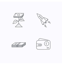 Profit investment cash money and startup icons vector image