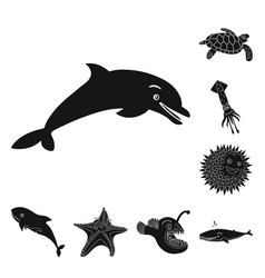 sea and animal symbol vector image