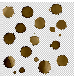 coffee stain set vector image