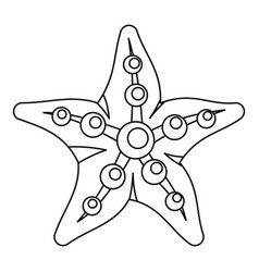 sea star icon outline style vector image