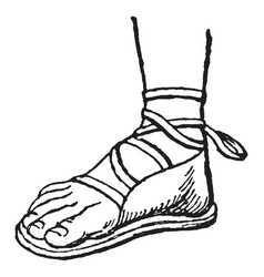 greek sandal foot vintage engraving vector image
