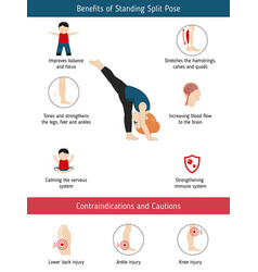 infographics of yoga pose infographics of yoga vector image