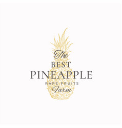Pineapple farms abstract sign symbol vector