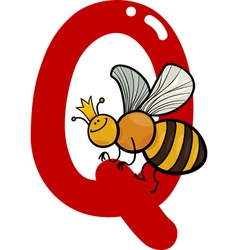 Q for queen bee vector image