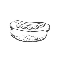 Sketch sausage hot dog with sauce isolated vector