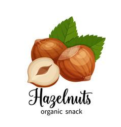 hazelnut in cartoon style vector image vector image