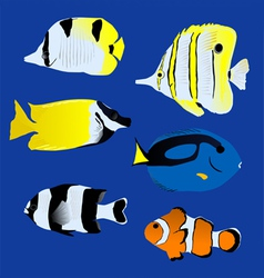 Aquarium Great tropical fish collection vector image